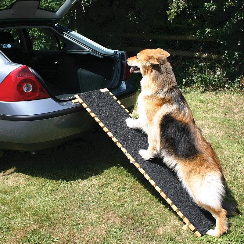 Pet Ramp For Car >> Folding Dog Ramp