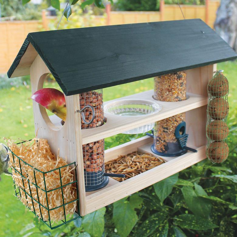 Image of Bird Feeding Station