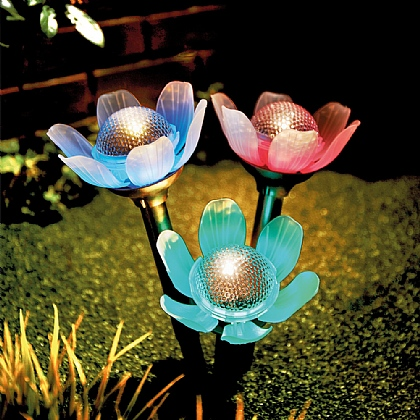 Set of 3 Solar Flower Lights - Buy 2 & Save £10