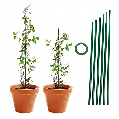 Pack of 6 Extending Plant Supports - Buy 2 & Get 3rd Free