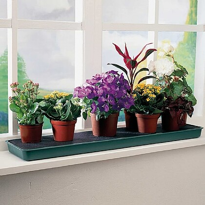 Self-Watering Windowsill Plant Tray - Buy 2 & Save £5