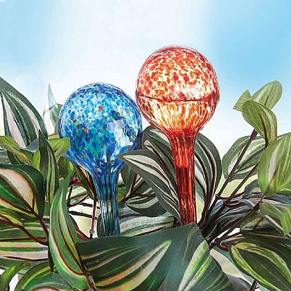 Set of 6 Watering Globes