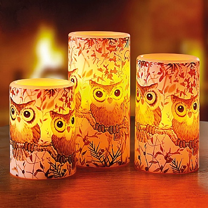Set of 3 Owl Candles