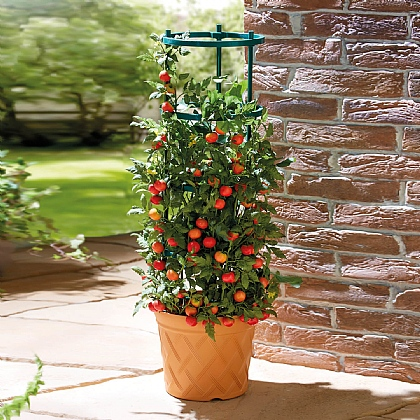 Grow Pot Tower - Buy 2 & Save £10
