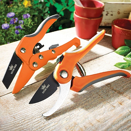 Pack of 2 Secateurs