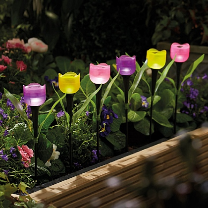 Pack of 6 Tulip Solar Lights