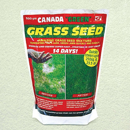 500g Perfect Grass Canada Green Grass Seed