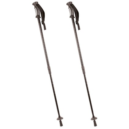 Pair of Hiking Poles