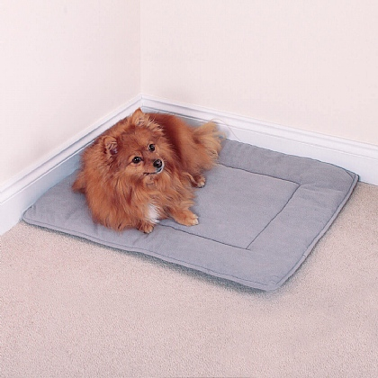 Small Pet Travelling Mat