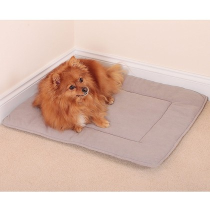 Large Pet Travelling Mat