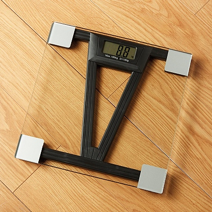 Digital Talking Scales